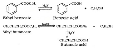 Plus Two Chemistry Notes Chapter 12 Aldehydes, Ketones and Carboxylic Acids 46