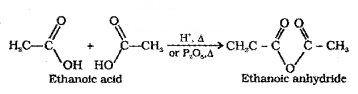 Plus Two Chemistry Notes Chapter 12 Aldehydes, Ketones and Carboxylic Acids 49