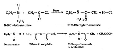 Plus Two Chemistry Notes Chapter 13 Amines 12