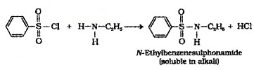 Plus Two Chemistry Notes Chapter 13 Amines 16