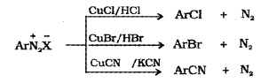 Plus Two Chemistry Notes Chapter 13 Amines 25