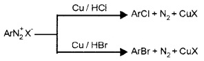 Plus Two Chemistry Notes Chapter 13 Amines 26