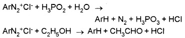 Plus Two Chemistry Notes Chapter 13 Amines 28