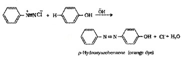 Plus Two Chemistry Notes Chapter 13 Amines 31