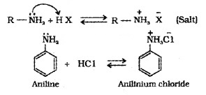 Plus Two Chemistry Notes Chapter 13 Amines 8