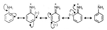 Plus Two Chemistry Notes Chapter 13 Amines 9