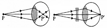 Plus Two Physics Notes Chapter 9 Ray Optics and Optical Instruments 65