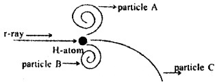 Plus Two Physics Chapter Wise Questions and Answers Chapter 4 Moving Charges and Magnetism 5M Q7