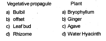 Plus Two Botany Chapter Wise Previous Questions Chapter 1 Reproduction in Organisms 2
