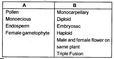 Plus Two Botany Chapter Wise Previous Questions Chapter 2 Sexual Reproduction in Flowering Plants 2