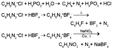 Plus Two Chemistry Chapter Wise Questions and Answers Chapter 13 Amines 2M Q5