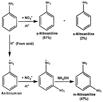 Plus Two Chemistry Chapter Wise Questions and Answers Chapter 13 Amines 4M Q12.1