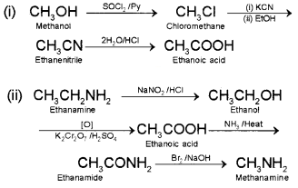 Plus Two Chemistry Chapter Wise Questions and Answers Chapter 13 Amines Textbook Questions Q4