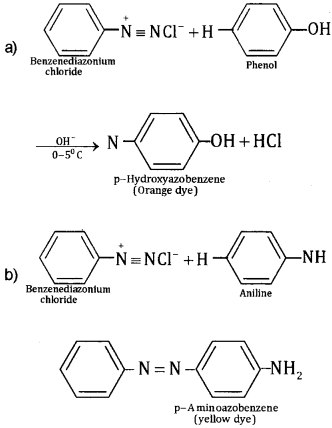 Plus Two Chemistry Chapter Wise Questions and Answers Chapter 13 Amines Textbook Questions Q7.3
