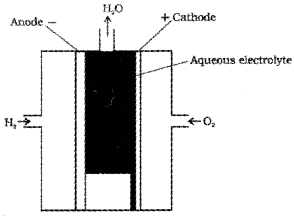 Plus Two Chemistry Chapter Wise Questions and Answers Chapter 3 Electrochemistry 4M Q13