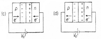 Plus Two Physics Chapter Wise Questions and Answers Chapter 14 Semiconductor Electronics Materials, Devices and Simple Circuits Textbook Questions 4M Q9.1