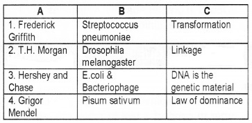 Plus Two Zoology Chapter Wise Questions and Answers Chapter 4 Molecular Basis of Inheritance 2M Q3.1