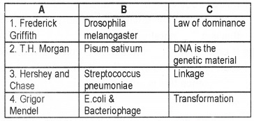 Plus Two Zoology Chapter Wise Questions and Answers Chapter 4 Molecular Basis of Inheritance 2M Q3