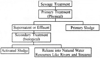 Plus Two Zoology Chapter Wise Questions and Answers Chapter 7 Microbes in Human Welfare 3M Q8.1