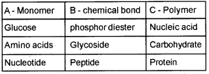 Plus One Zoology Chapter Wise Questions and Answers Chapter 4 Biomolecules 1M Q13
