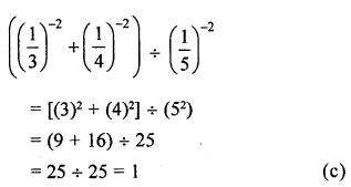 ML Aggarwal Class 8 Solutions for ICSE Maths Chapter 2 Exponents and Powers Objective Type Questions Q4.2