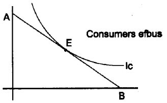 Plus Two Microeconomics Notes Chapter 2 Theory of Consumer Behaviour 4