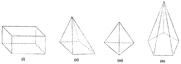 ML Aggarwal Class 8 Solutions for ICSE Maths Chapter 17 Visualising Solid Shapes Check Your Progress Q6.1