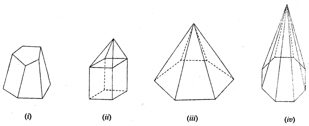 ML Aggarwal Class 8 Solutions for ICSE Maths Chapter 17 Visualising Solid Shapes Ex 17.2 Q3.1