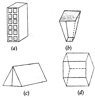 ML Aggarwal Class 8 Solutions for ICSE Maths Chapter 17 Visualising Solid Shapes Objective Type Questions Q10.1