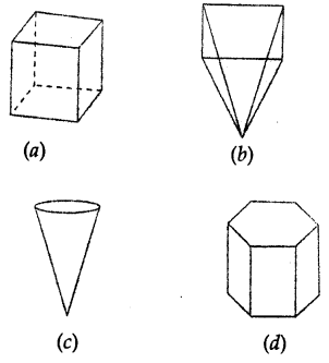 ML Aggarwal Class 8 Solutions for ICSE Maths Chapter 17 Visualising Solid Shapes Objective Type Questions Q9.1
