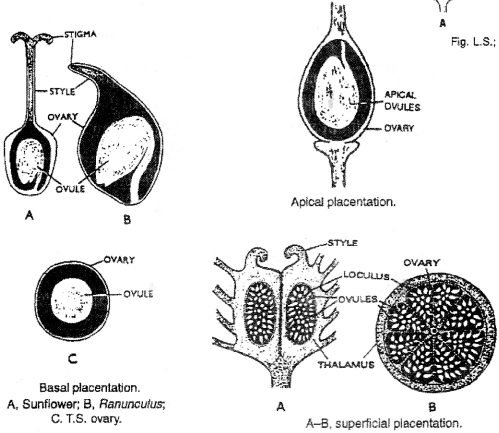ISC Class 12 Biology Previous Year Question Papers Solved 2015 5