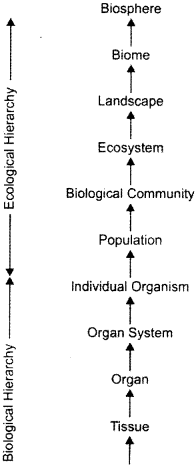 ISC Class 12 Biology Previous Year Question Papers Solved 2016 2