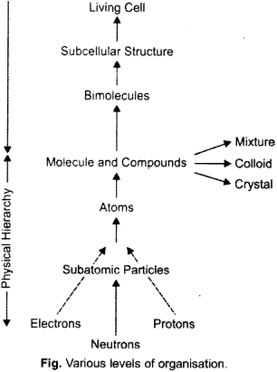 ISC Class 12 Biology Previous Year Question Papers Solved 2016