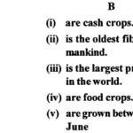 ICSE Solutions for Class 6 Geography Voyage Chapter 6 Major Crops 1