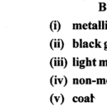 ICSE Solutions for Class 6 Geography Voyage Chapter 7 Minerals and Ores 1
