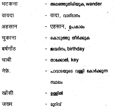Plus Two Hind Textbook Answers Unit 3 Chapter 3 मुरकी उर्फ बुलाकी (कहानी) 20