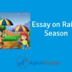 Essay on Reason Season