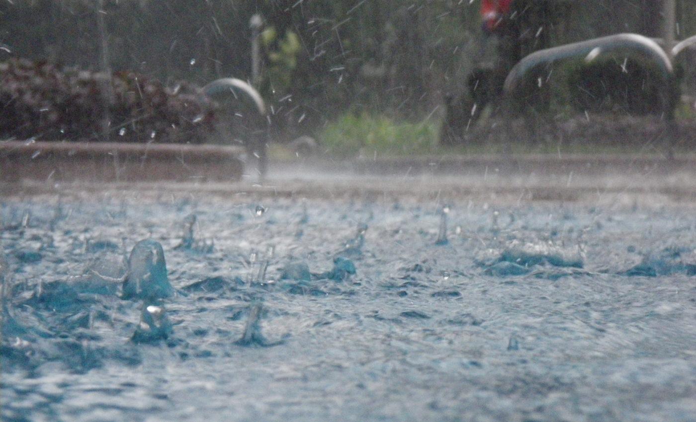 Rainy Season Essay or monsoon season essay