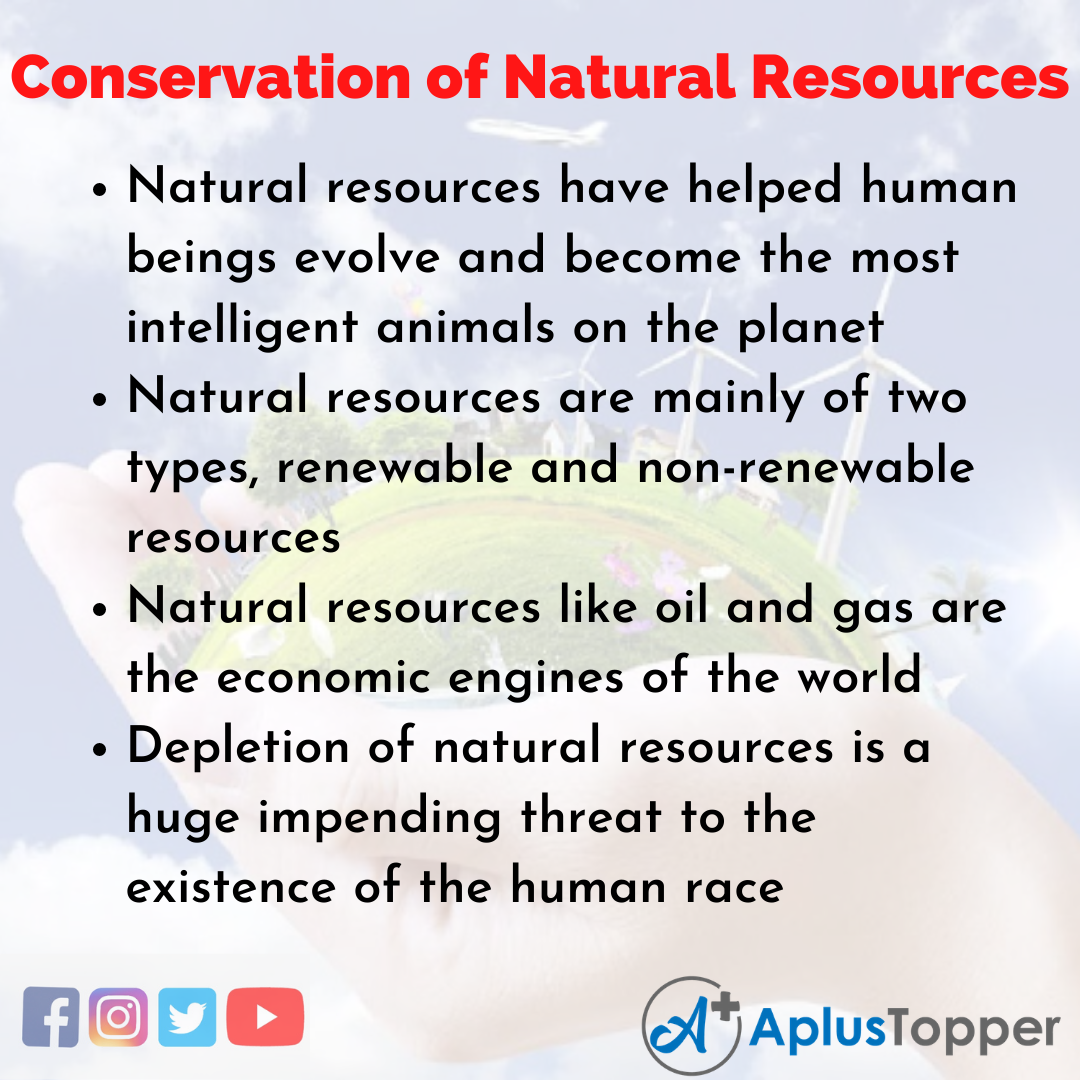 Essay about Conservation of Natural Resources