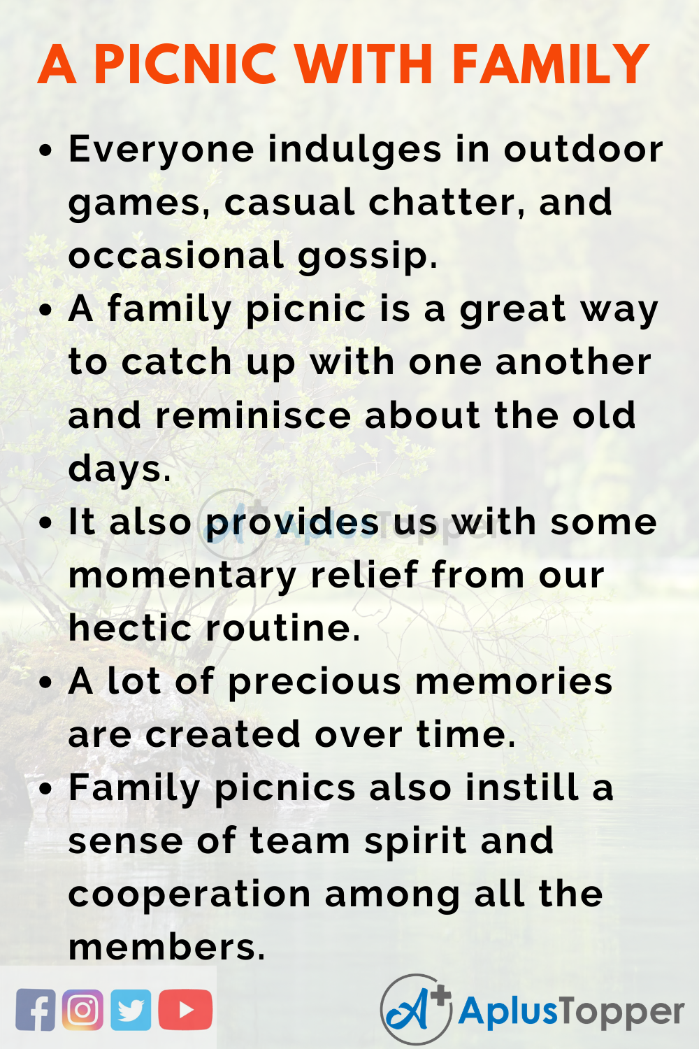 Essay about a Picnic with Family