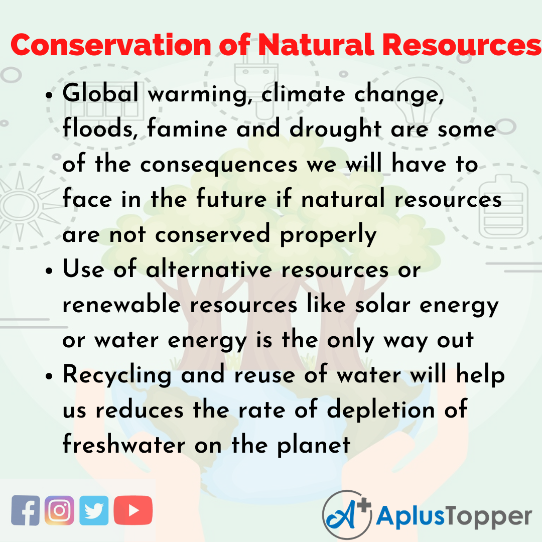 Essay for Conservation of Natural Resources