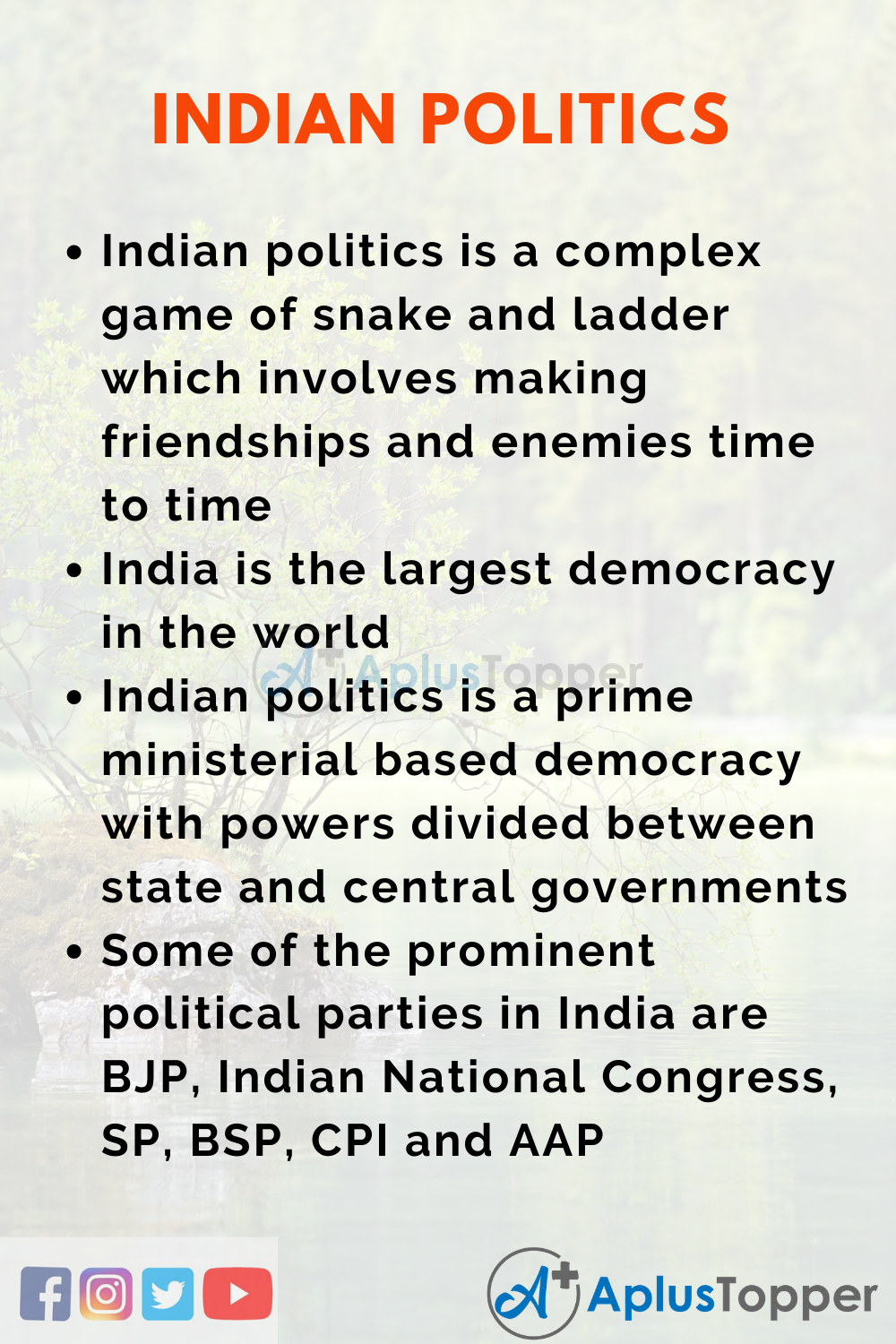 Indian Politices Essay