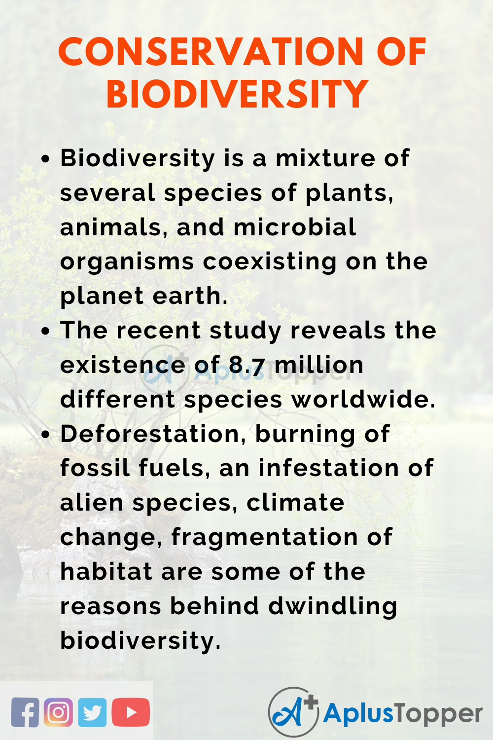 Essay about Conservation of Biodiversity