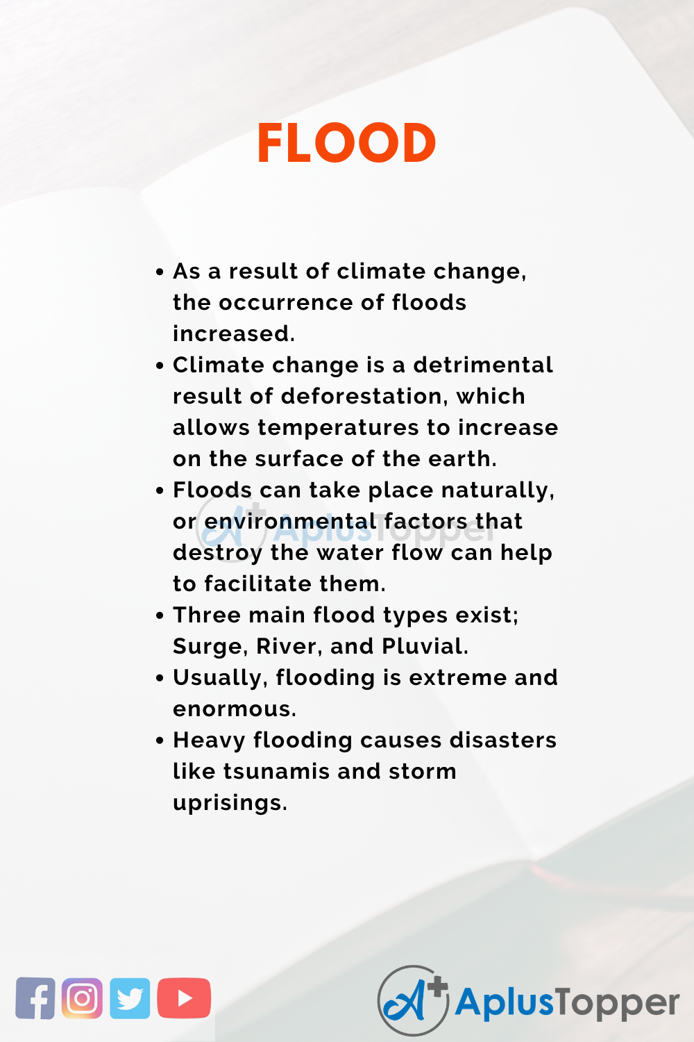 Essay about Flood