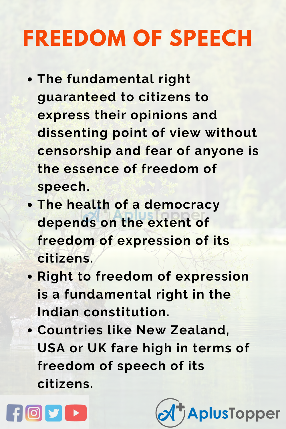 Essay about Freedom of Speech