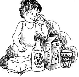 Essay on Milk