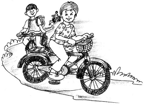 Essay on Pleasure of Cycling