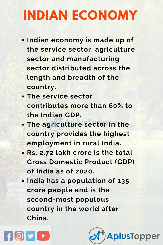 Indian Economy Essay