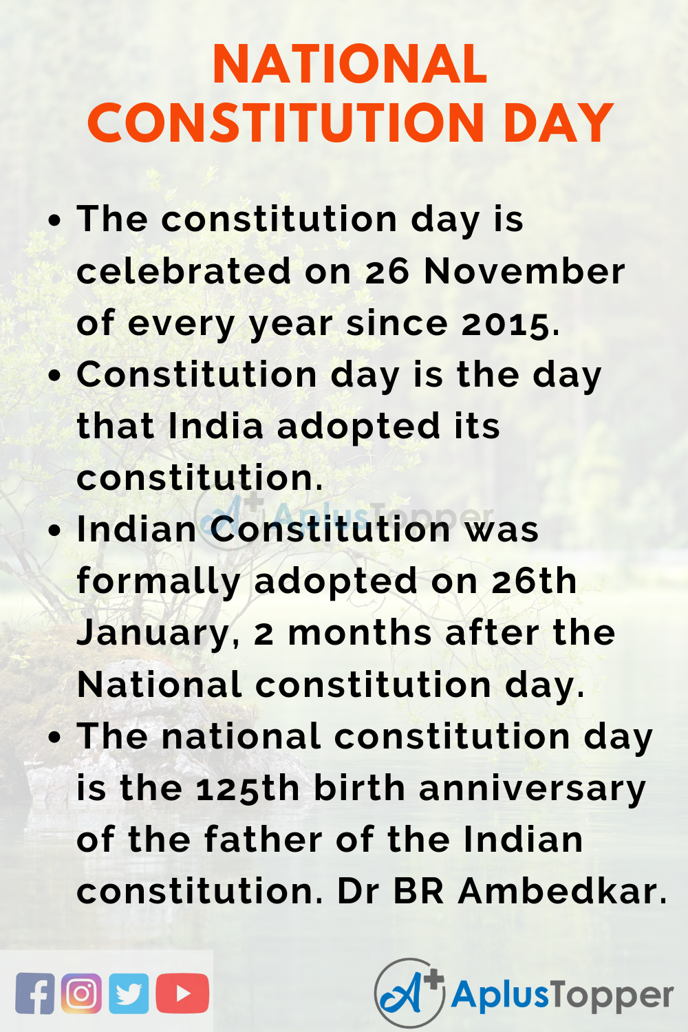 National Constitution Day Essay
