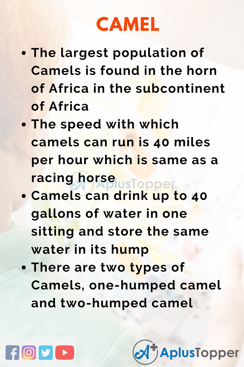 10 Lines on Camel for Higher Class Students